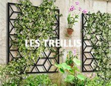 LES TREILLIS