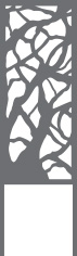 brise-vue et treillis arbre pour jardinière