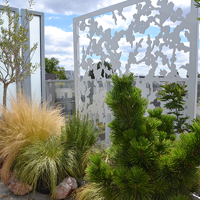 brise-vue de terrasse avec plantes basses